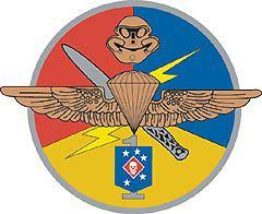 Эмблема Подразделения 1 морской пехоты США, иллюстрация с сайта wikipedia.org
