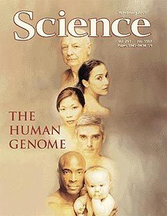 Обложка журнала Science, в котором была опубликована последовательность генома человека. Фото с сайта genome.imim.es