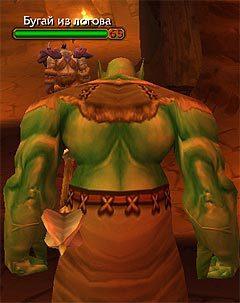 Русский World of Warcraft. Фотогалерея