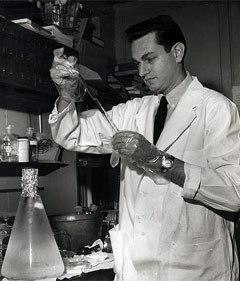 Ниренберг в лаборатории. Фото с сайта nlm.nih.gov