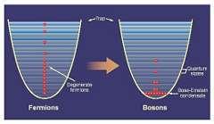 """Фермионы (слева) выстраиваются """"в линейку"""" по энергиям квантовых уровней, а бозоны (справа) могут скапливаться на уровне с наименьшей энергией. Изображение  выпуска 23 бюллетеня ПерсТ за 2003 год"""