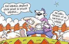 Турецкая карикатура. Мужчина: Пойдем скорее, приготовим вкусного мяса. Овечка: Отлично, а то трава как-то поднадоела.
