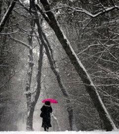 Заснеженный парк в Софии, Болгария. Фото (c)AFP