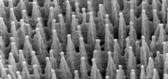 Конусы на поверхности кремния. Фото SIOnyx