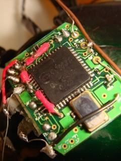 Контроллер управления жуком-слоном. Фото с сайта physorg.com