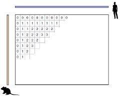 Иллюстрация заполнения матрицы при работе алгоритма выравнивания. Сравниваются геном человека и мыши.(Нажмите, чтобы увеличить)