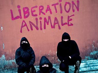 Активисты движения Animal Liberation Front. Фото с сайта animalliberationfront.com