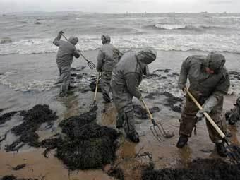 Бригады МЧС собирают нефтепродукты. Фото AFP