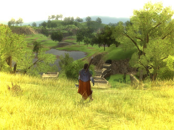 Скриншот игры Lord of the Rings Online