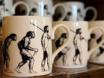 Экспозиция в доме-музее Чарльза Дарвина. Фото (c)AFP