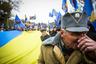 Бывший президент Украины Виктор Ющенко в 2010 году признал воинов УПА борцами за независимость Украины