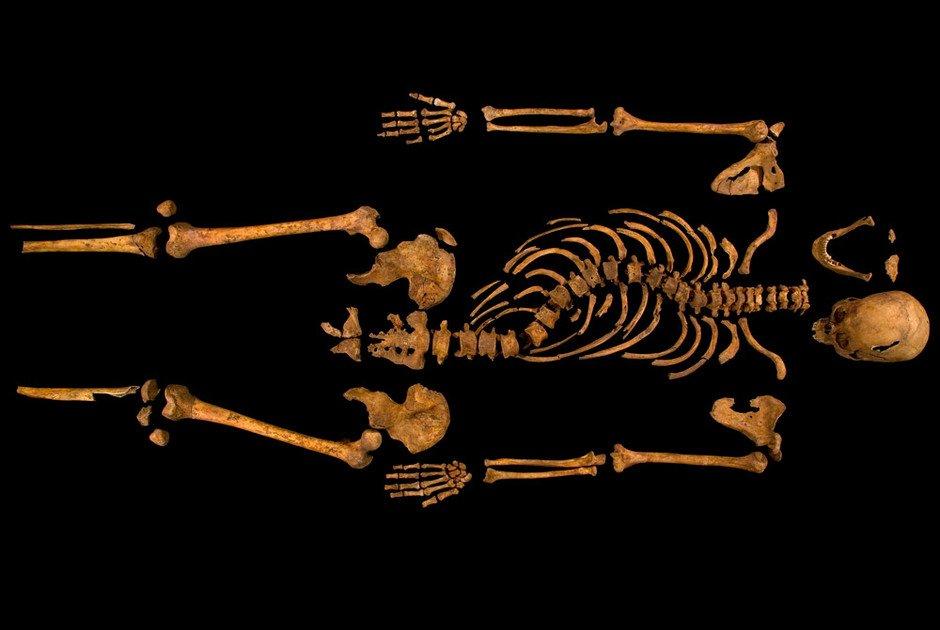 Останки Ричарда III