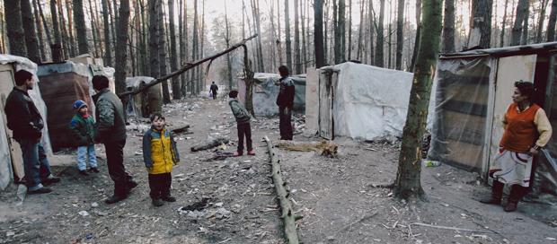 В лесу под Киевом поселилась группа цыган, приехавших из Закарпатья.