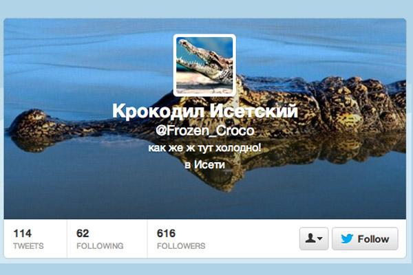 Скриншот твиттера Исетского крокодила