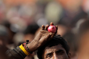 A supporter of India's opposition Bharatiya Janata party (BJP) led National Democratic Alliance (NDA) holds an onion at a rally in New Delhi, India, Wednesday, Dec. 22, 2010. The Indian government Monday suspended onion exports until Jan. 15 as prices of the vegetable, seen as a bellwether for general inflation, more than doubled in the last two months. The rally, was directed against policies of the Congress party lead United Progressive Alliance (UPA) government and a spate of corruption charges against it. (AP Photo/Manish Swarup)
