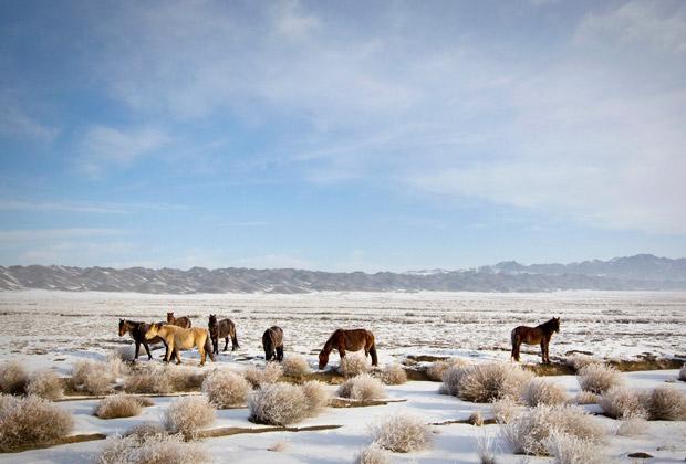 Пейзаж на юго-востоке Казахстана