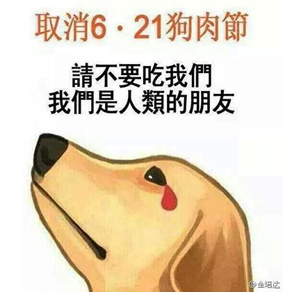 Агитация из соцсетей против употребления в пищу собачьего мяса