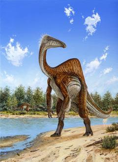 Deinocheirus mirificus в представлении художника.