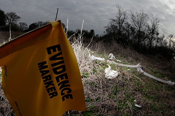 "The skeletal remains of Patty Robinson are shown at Texas State University's ""body farm,"" officially the Forensic Anthropology Research Facility, Thursday, Feb. 9, 2012, in San Marcos, Texas"
