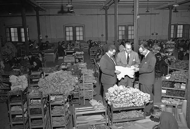 Фабрика компании The Lucky Shoe Co. переехавшая в итальянский Триест из Массачусетса в 1950 году.