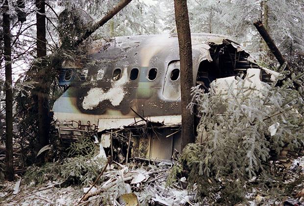 Разрушенная носовая часть самолета А-320 компании French Air Inter, 20января 1992года