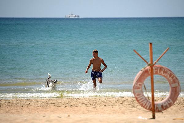 купить гашиш в анапе у моря недорого