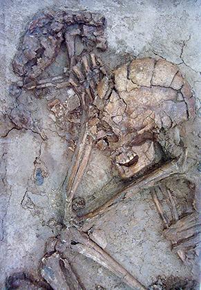 Скелеты человека и собаки, обнаруженные в развалинах дома в Галилее возрастом 12 тысяч лет