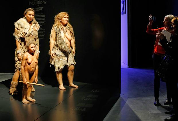 Фигуры неандертальцев в лионском Музее антропологии