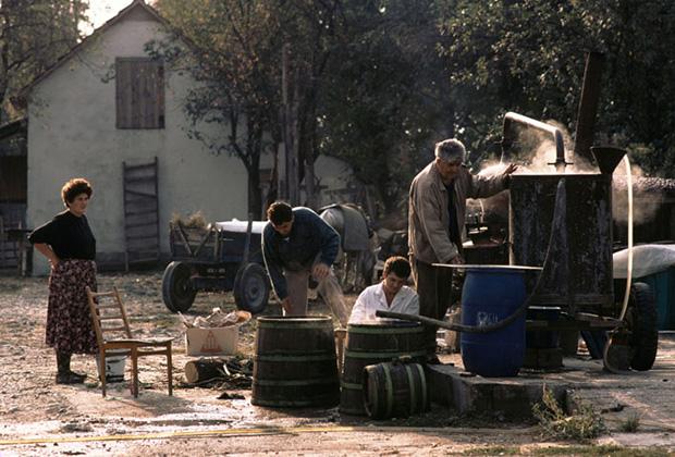 Многовековая традиция производства ракии в Сербии никогда не прерывалась