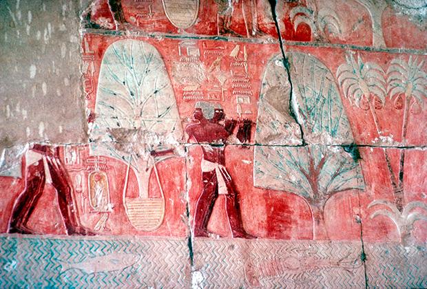 Древнеегипетская фреска, изображающая возвращение экспедиции из земли Пунт