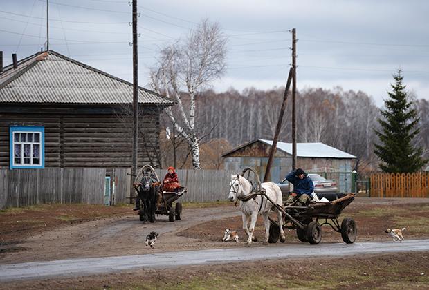 Лошади с телегами на одной из улиц села Мышланка Новосибирской области
