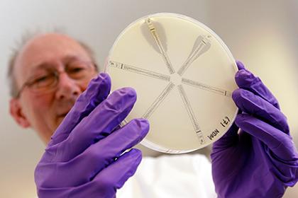 Работа над  устойчивыми к антибиотикам бактериями