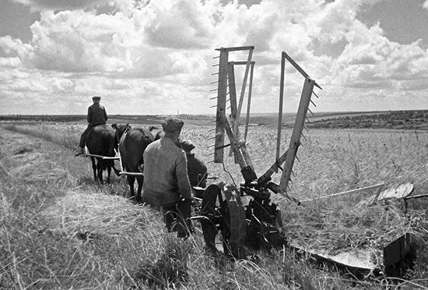 Колхозники на покосе, 1932 год
