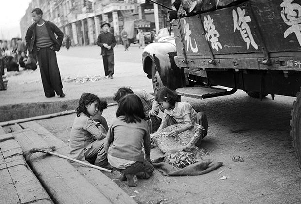 Китайские беженцы собирают ветки и щепки на улицах Гонконга, 1955 года
