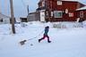 Прогулка со щенком. По закону все собаки старше восьми недель должны быть на поводке, но в Шишмарёве это правило часто не соблюдается, и псы свободно бегают по улицам поселка.