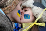 Students kiss as they stand on a street to form a human chain from the Ukrainian capital to the western border during a demonstration in support of EU integration at Independence Square in Kiev
