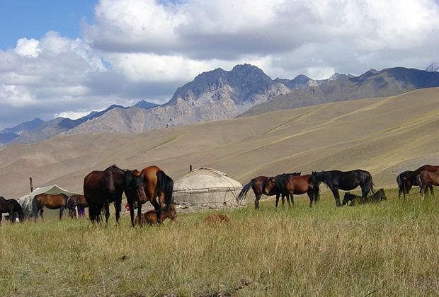 В горах Киргизии