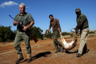 Stan Burger (L) walks while holding a hunting rifle as Francois Cloete (C) is helped by Lucky to carry an Impala that was shot by Francois during their hunting trip at the Iwamanzi Game Reserve in the North West Province, June 6, 2015. Africa's big game hunting industry helps protect endangered species, according to its advocates. Opponents say it threatens wildlife. Now a mooted change in regulations in the United States could affect the number of foreigners who come to Africa to hunt big game, damaging the industry and possibly hurting wildlife. Picture taken June 6, 2015. REUTERS/Siphiwe Sibeko
