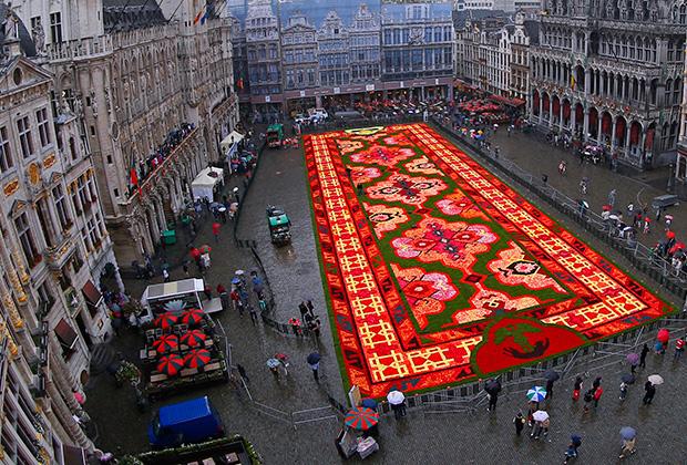 Ковер, сделанный из цветов на главной площади Брюсселя, август 2014 года