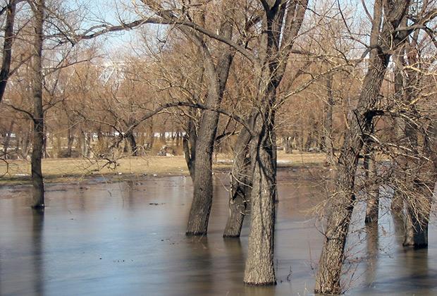 Весной обе омские реки широко разливаются, подтапливая городские парки и скверы