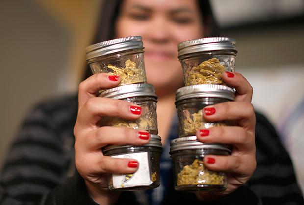 В США действует немало консалтинговых агентств по выращиванию марихуаны
