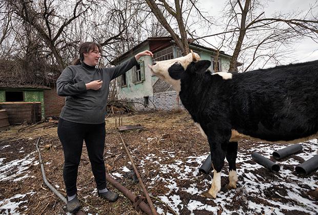 Чернобыль — 30 лет после аварии на Чернобыльской АС. Самопоселенка Александра и ее корова-кормилица