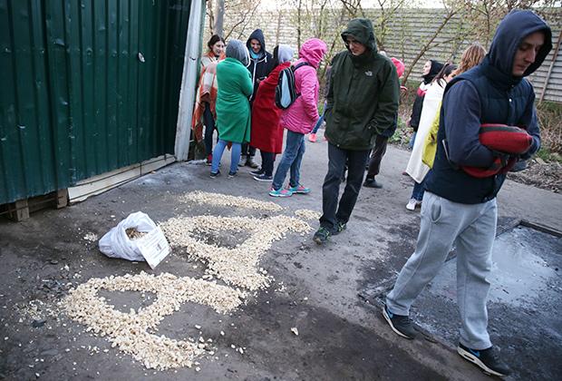 29 апреля 2016 года. Зоозащитники у ворот частного приюта «ЭКО Вешняки» на улице Аллея Первой Маевки, где сотрудники полиции обнаружили более 40 погибших кошек и собак.