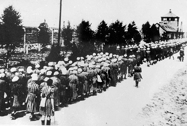 Прибытие поезда с депортированными евреями в лагерь смерти Аушвиц