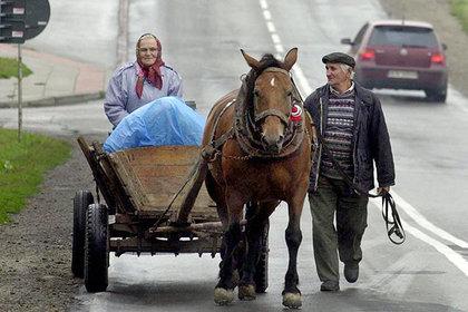 Польские фермеры