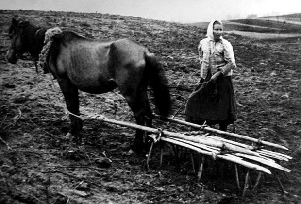 Крестьянка на полевых работах. 1900 год