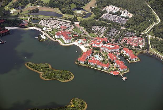 Во Флориде аллигатор — ближайший сосед человека