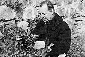 Николай Вавилов, 1935 год