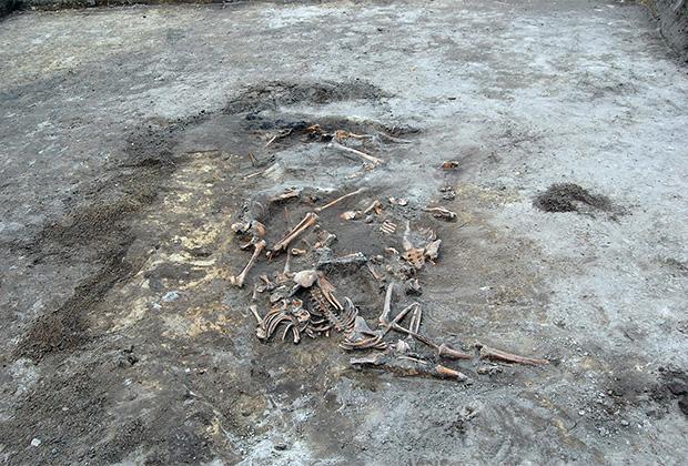 Обнаруженное массовое захоронение в деревне Воля Островецкая на Волыни
