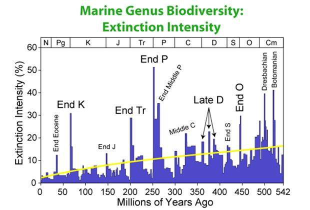 Периоды массовых вымираний на Земле и снижение видового разнообразия